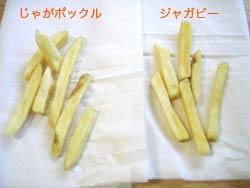 20070118-04.jpg